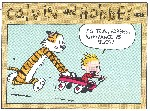 ignorance is bliss calvin hobbes