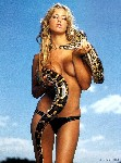 hot model with snake